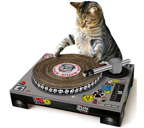 Картонная игрушка для кошки в стиле DJ