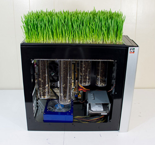 Процветающий компьютер