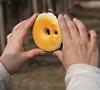 Фото-пончик